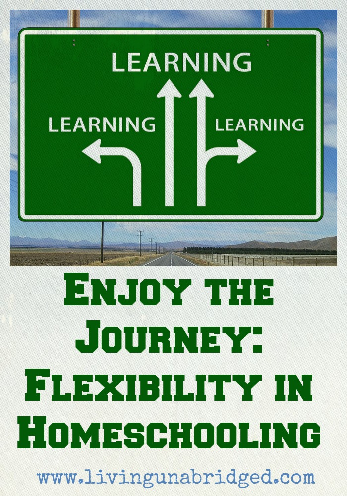 enjoy journey flexible homeschool