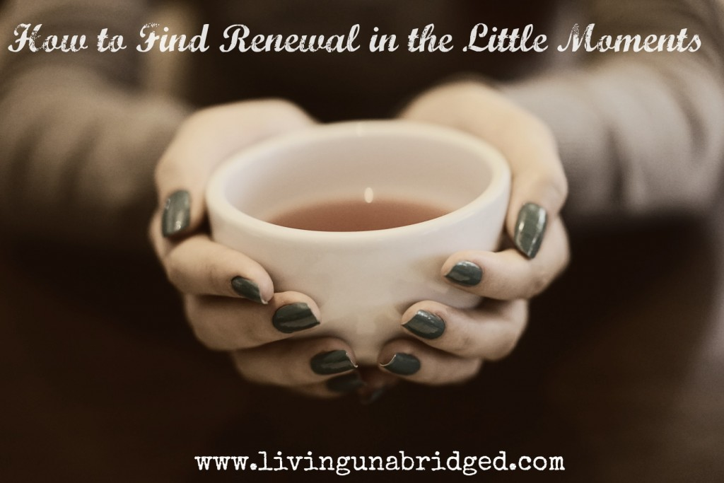 renewal in little moments