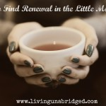 How to Find Renewal in the Little Moments