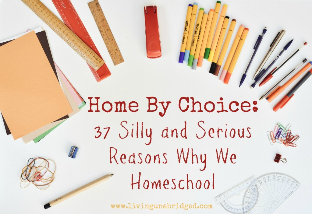 Home By Choice 37 Silly And Serious Reasons We Homeschool