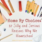 Home By Choice: 37 Silly and Serious Reasons We Homeschool