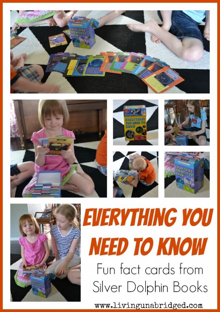 everything you need to know fact cards from silver dolphin books