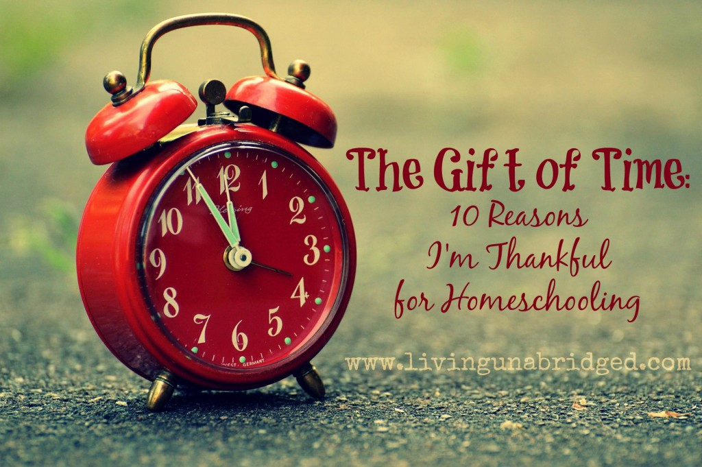 homeschooling gives the gift of tiime