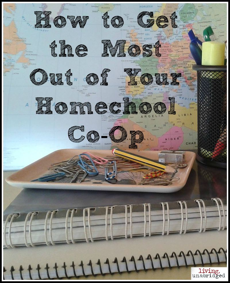 homeschool co-op pin