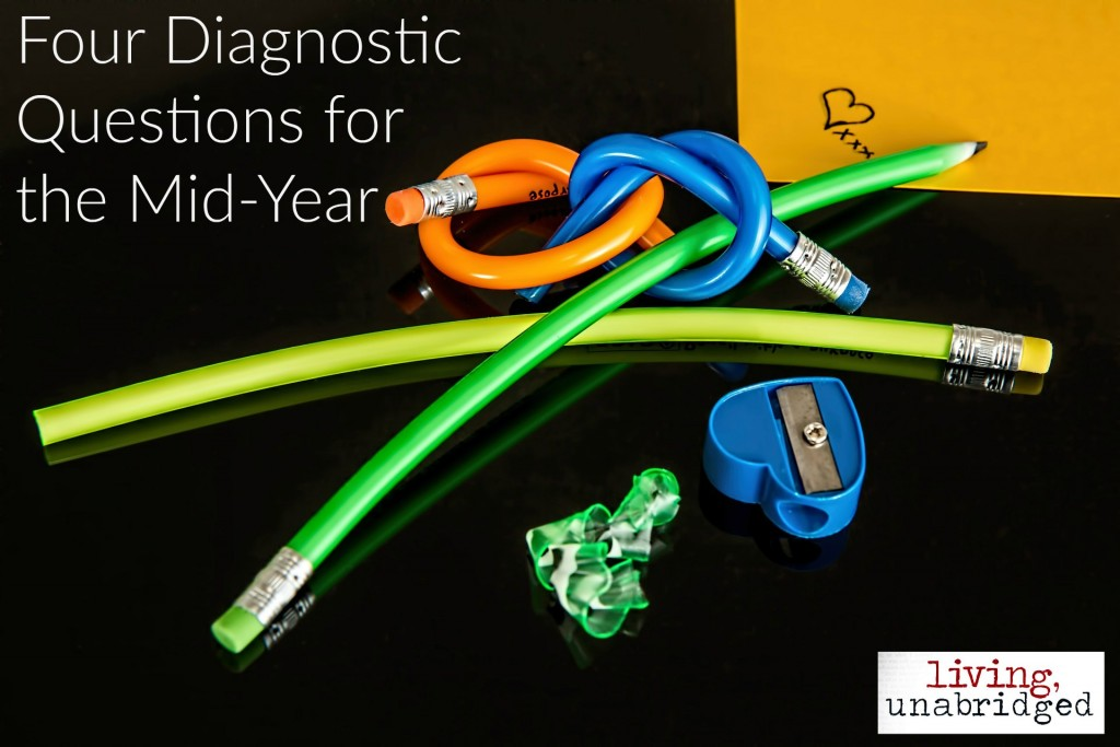 four diagnostic questions for homeschool mid-year