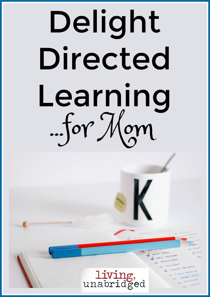 delight directed learning for mom pin