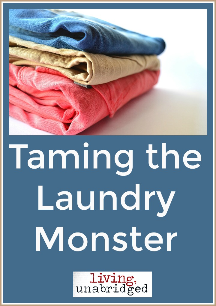taming the laundry monster tips