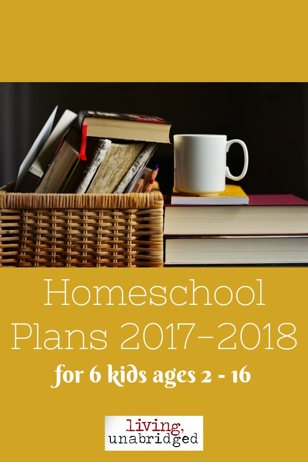 homeschool plans 2017 pin