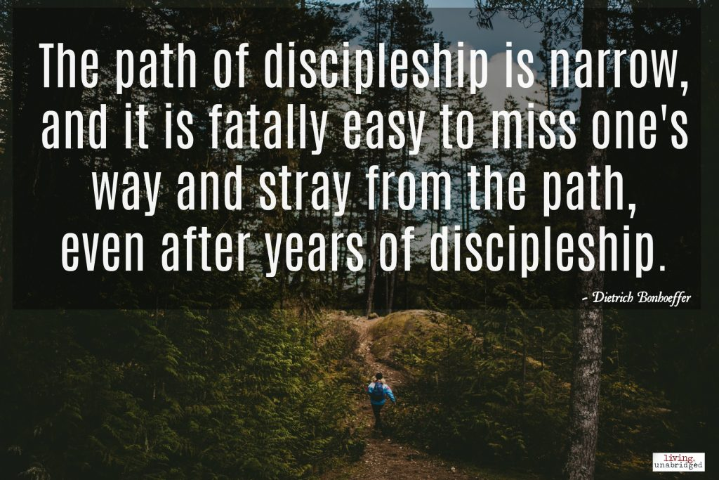 the bigger picture of discipleship in the book the cost of discipleship by dietrich bonhoeffer The cost of discipleship is a book by the german theologian dietrich bonhoeffer , considered  away the word and sacraments wholesale, we baptised,  confirmed, and absolved a whole nation without condition  read edit view  history.