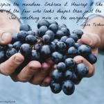 Words on Wednesday – Never Despise the Mundane