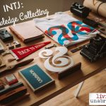 INTJ – Knowledge Collecting